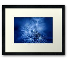 Tiny Fireworks Framed Print