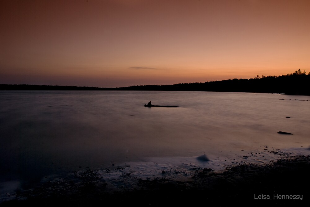 Cypress Lake  Sunset I by Leisa  Hennessy
