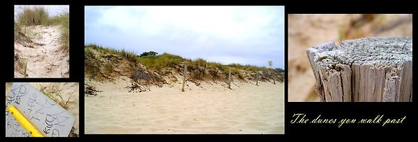 The Dunes We walk Past by Gozza