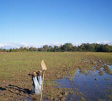 Sinking Farmer by Debra  Butler