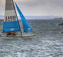 Sailing Boat by Nathan Ashton