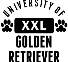 University Of Golden Retriever by kwg2200