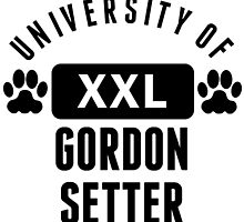 University Of Gordon Setter by kwg2200