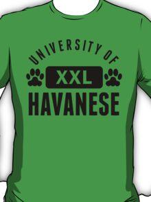 University Of Havanese T-Shirt