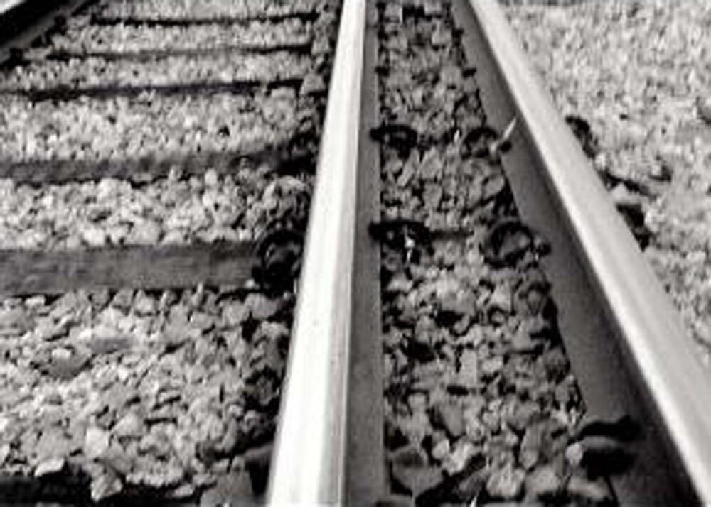 Culprit lines by Gozza