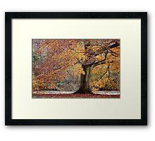 Every leaf speaks bliss to me... Framed Print