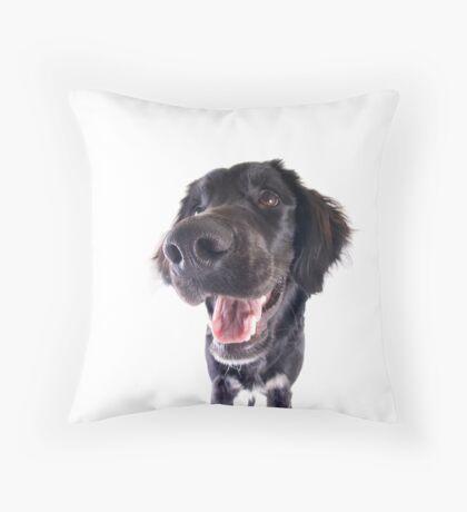 Funny Black Dog with Big Nose Throw Pillow
