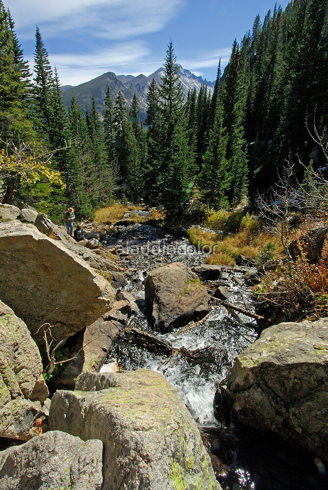 Colorado Mountain Stream - Estes Park by aladdincolor