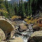 Colorado Mountain Stream - Estes Park by aladdincolor
