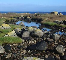 Arran - rock pools by fifi