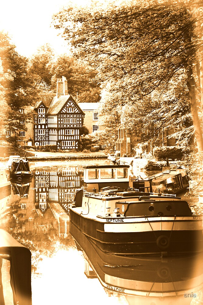 worsley  by ania