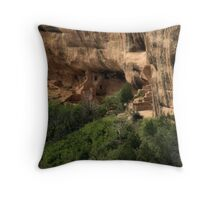 Old Fire House Throw Pillow