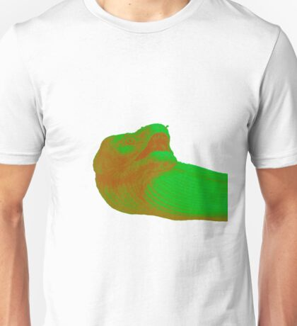 EEL Faded Unisex T-Shirt