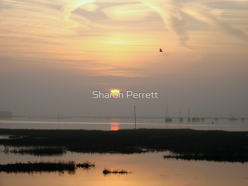 Sunrise 4-10-07 by Sharon Perrett