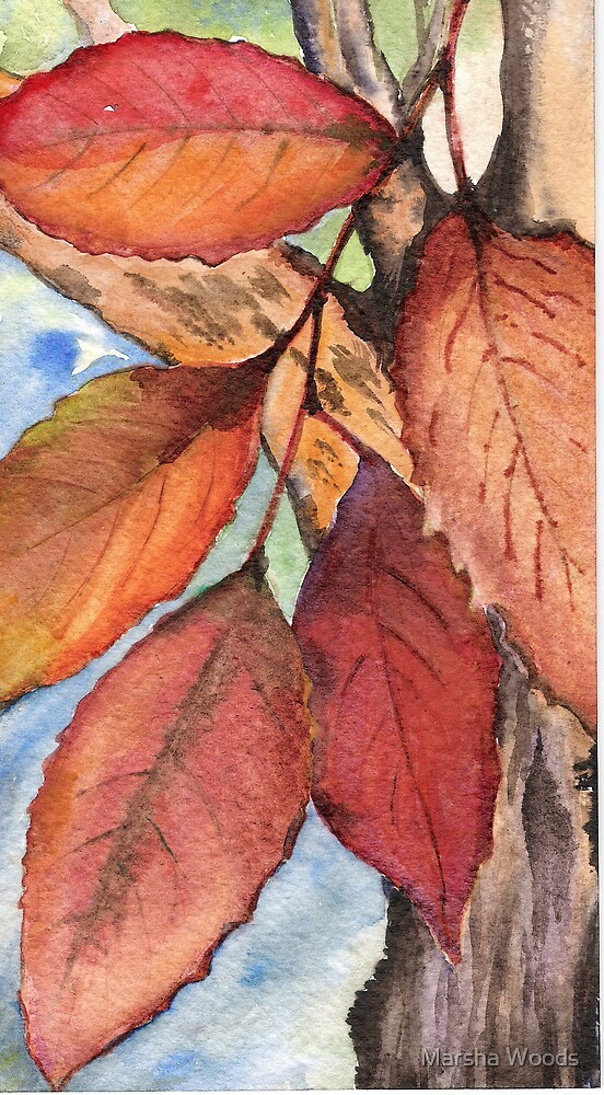 Leaves of Autumn by Marsha Woods