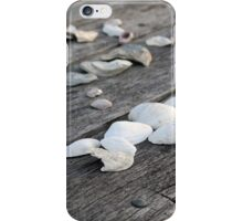 Summer Leftovers iPhone Case/Skin