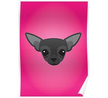 Black Chihuahua Poster