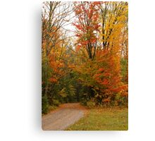 My Road to Happyness Canvas Print