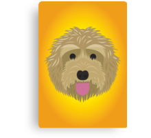 Golden Labradoodle  Canvas Print