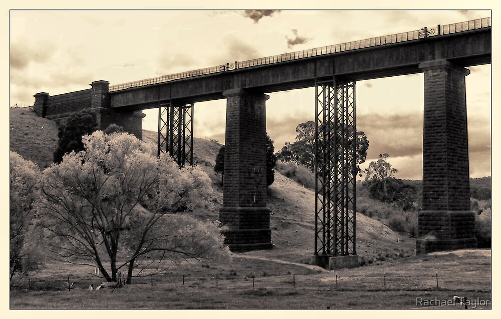Taradale Railway Bridge - Victoria by Rachael Taylor
