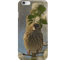 Cute Little Finch iPhone Case/Skin