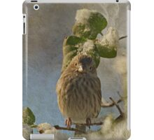 Cute Little Finch iPad Case/Skin