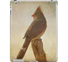 Snowy Day iPad Case/Skin