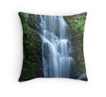 Berry Creek Falls Throw Pillow