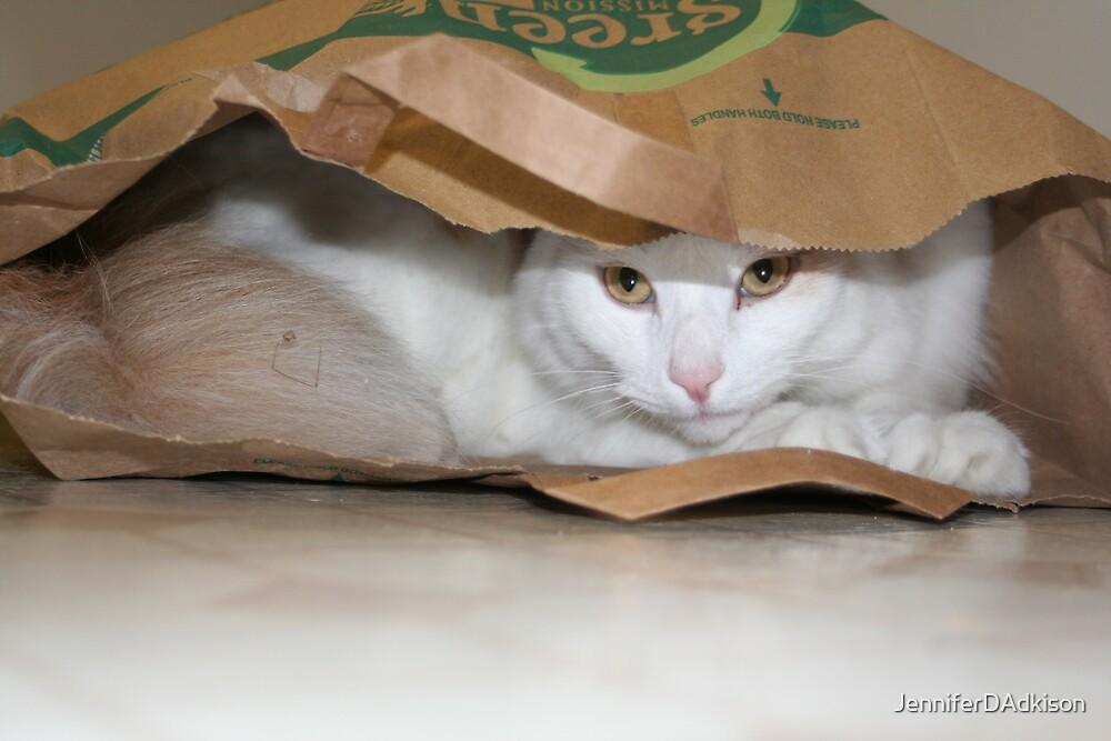 Hiding by JenniferDAdkison