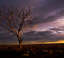 The Magic Hour- South Australia by morealtitude