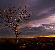 The Magic Hour- South Australia by morealtitude