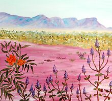 Flowers of the Pilbara by robert murray