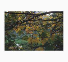Autumn Leaves Kids Tee