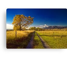 The Road To Home Canvas Print