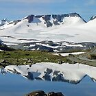 Sognefjell - Norway by Arie Koene