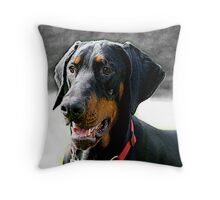 Mr Darcy in the Snow Throw Pillow