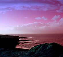 sea view sligo by nexus