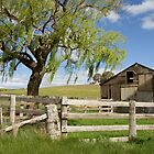 Derelict Barn by AustralianImagery