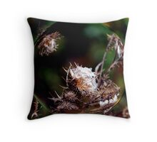 Sam's Lens Throw Pillow