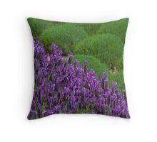 Lavendar Field Throw Pillow