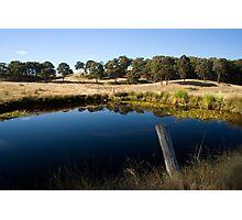 Bush Reflection Photographic Print
