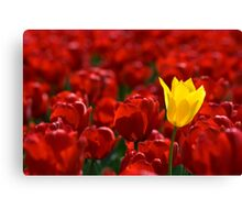 Alone in a crowd Canvas Print
