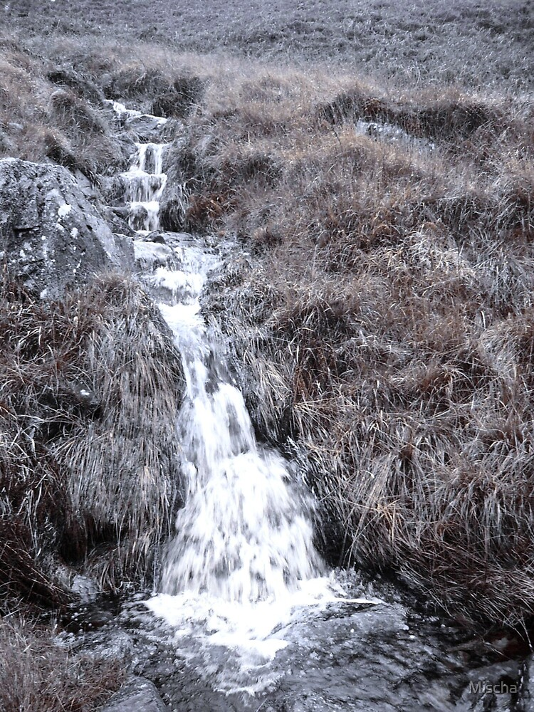 Little Waterfall by Mischa