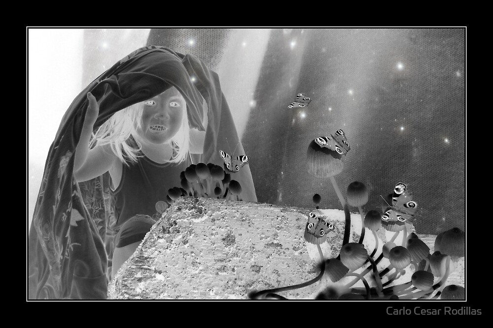 Child On The Mushrooms, Fireflies And Butterflies World  by Carlo Cesar Rodillas