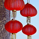Chinese Lanterns by Dave Lloyd