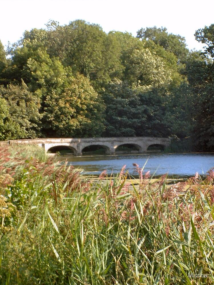 Bridge by Mischa