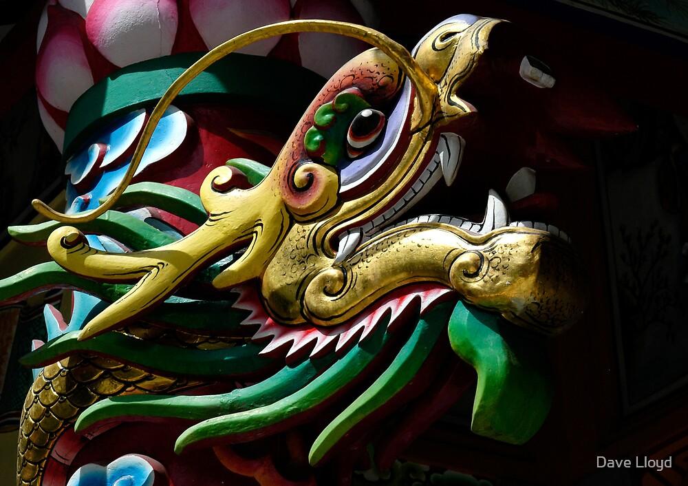 Dragon by Dave Lloyd