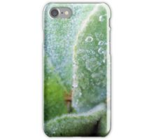 nature's beauty - water drops iPhone Case/Skin