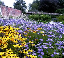 A walled garden by gothgirl