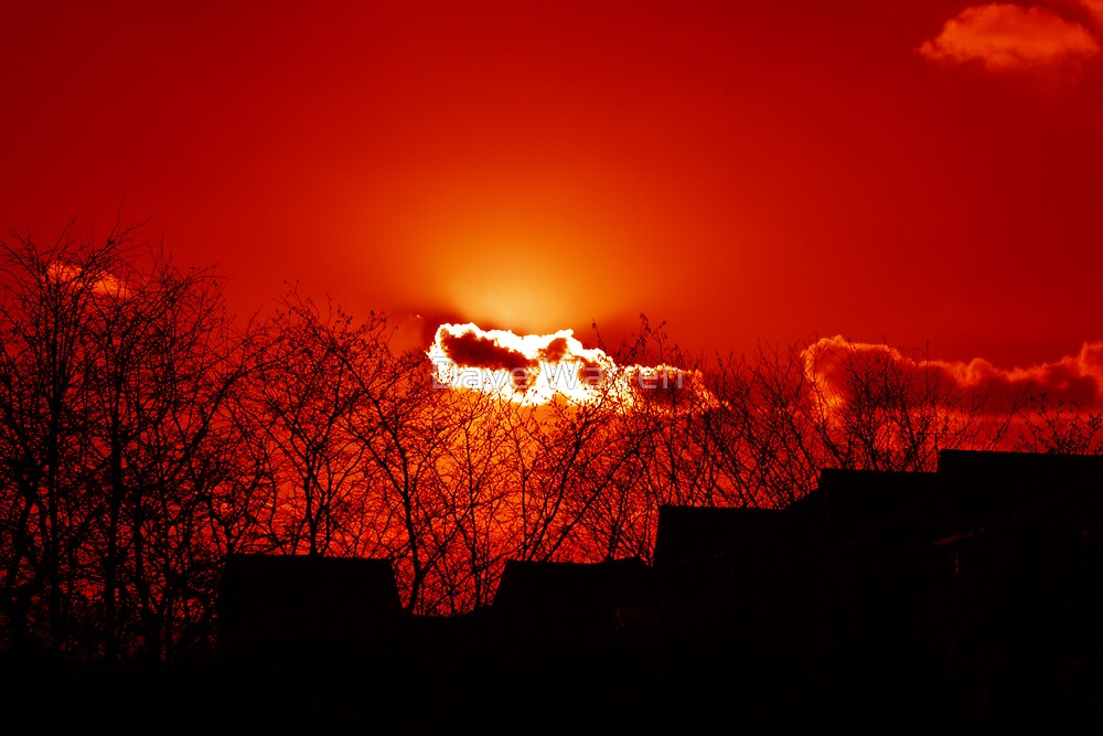 Burning Cloud by Dave Warren